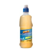 L-CARNITINE 500ml - POWERBAR