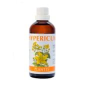 Hypericum 100 ml da Plantis