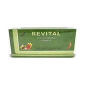 REVITAL GINSENG + JALEA REAL + VITAMINA C 20 x 10ml - REVITAL