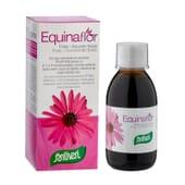 Sirop Equinaflor Forte 200 ml de Santiveri