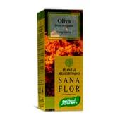 SANA FLOR OLIVO 70 Tabs - SANTIVERI