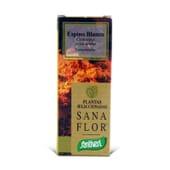 Sana Flor Espinheiro Branco 70 Tabs da Santiveri