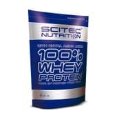 100% WHEY PROTEIN 500 g da Scitec