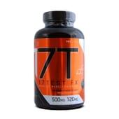 17 Test Fx 120 Caps da Starlabs Nutrition