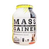 Mass Gainer 1100 g de Eric Favre Sport