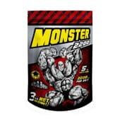 Monster Gainer 2200 3000 g de Vitobest