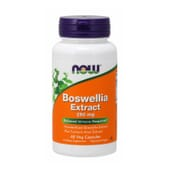 Boswellia Extract 250 mg 60 VCaps da Now Foods