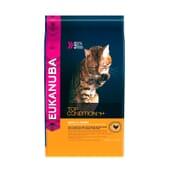 Top Condition 1+ Gato Adulto Frango 10 Kg da Eukanuba