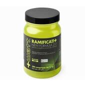 Ramificati+ 2:1:1 Vitamin B 300 Tabs da +Watt