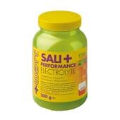 Sali+ Performance Electrolyte 500g da +Watt