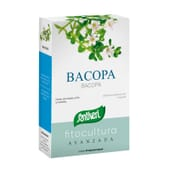 Bacopa Phytoculture Avancée 40 Caps de Santiveri