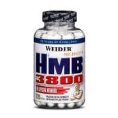 HMB 3800 - 120 Caps - WEIDER