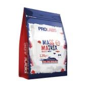 Mass Matrix 1.3 Kg da Prolab