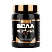 Bcaa + Glutamine 500g da Power Labs