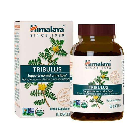 Tribulus 60 Caps da Himalaya Herbals