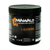 L-Glutamina 350g da Mahalo