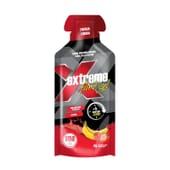 Extreme Fluid Gel Caféine 40g 24 Unités de Gold Nutrition
