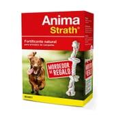 Anima Strath Fortificante Natural + Mordedor De Regalo de Stangest