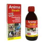 Anima Strath Fortificante Natural 250 ml de Stangest