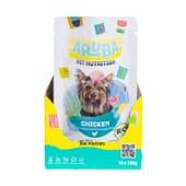 Aruba Dog Pollo Orgánico Con Calabaza Calabacín Y Cardo Bendito 100g 10 Uds de Aruba Pet Nutrition