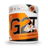 G2T Go2Train Pro 280g de Starlabs Nutrition