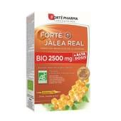 Forte Geleia Real Bio 2500 mg 20 Unds 15 ml da Forte Pharma